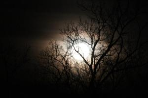 March full moon 2014
